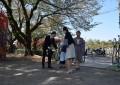 今日はひよこ組とつくし組の入園式です
