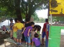 連休明け、7月17日の幼稚園の様子から